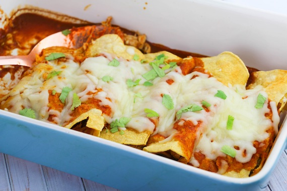 Chipotle Chicken Enchiladas Recipe Image